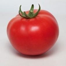 Томат KS 21 f1 ( 5 шт. семян )