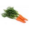 Морковь (семена на ленте)