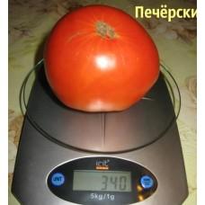 Томат Печёрский. (10 шт. семян)