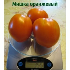 Томат Мишка косолапый оранжевый. (10 шт. семян)