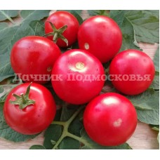 Томат Лёжкий красный ( 10 шт. семян )